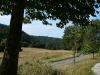 Wegstrecke in der Pfalz (Foto: Wolfgang Keber)